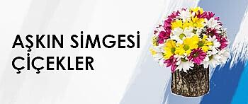 Vip Çiçekler